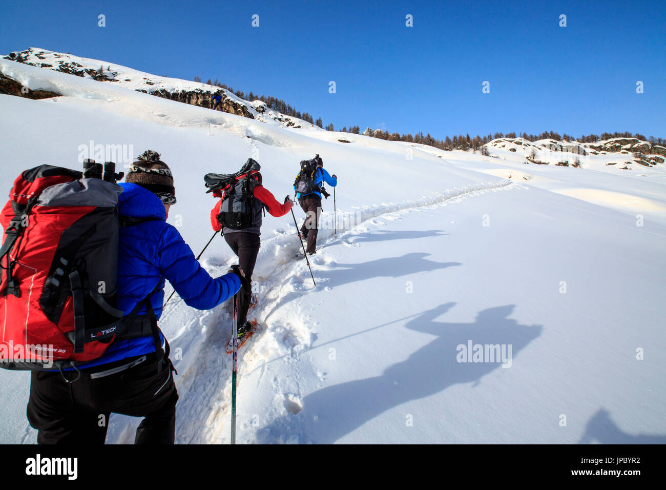 Snowshoe hikers walking along a track above the Maloja Pass. Engadine. Switzerland. Europe - Stock Image