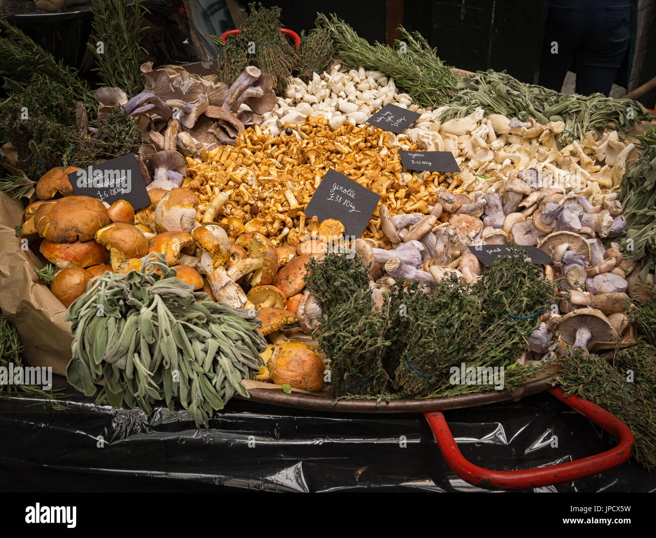 Attractive display of Mushrooms and Fungi on a Stall in Borough Market in Southwark, London - Stock Image