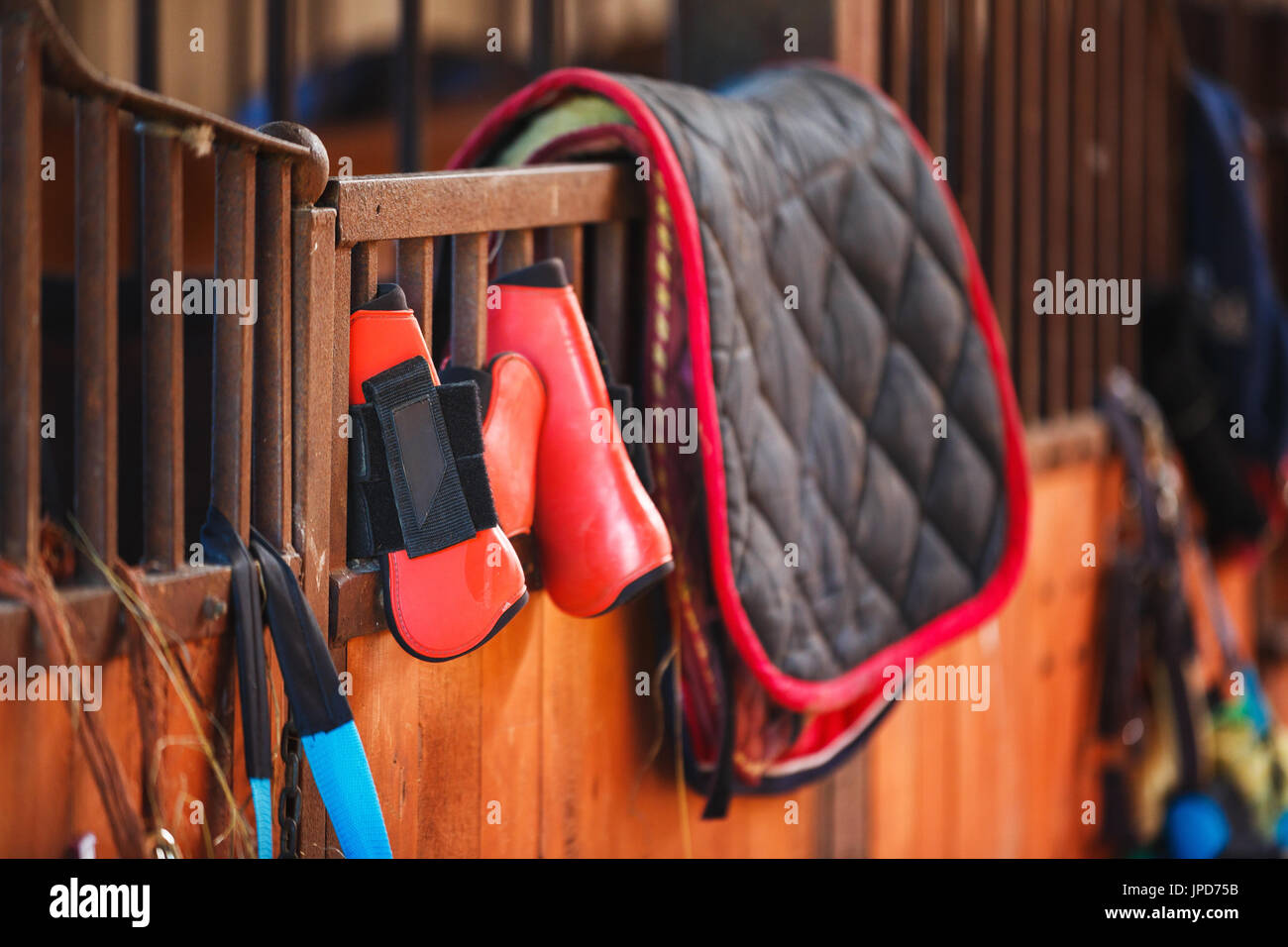 Used Horseback Riding In The Inside Stock Photos & Used
