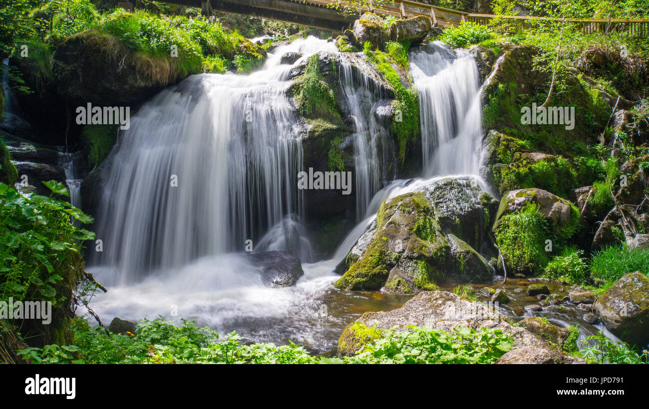 Black forest - Triberg waterfall at sunshine with a bridge - Stock Image