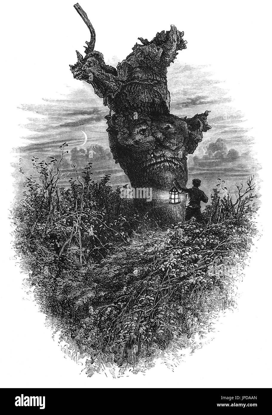 1870: A night visit to the Monkey Tree in  in Burnham Beeches, to the west of Farnham Common in Burnham, Buckinghamshire, England. Open to the public it is now  a Site of Special Scientific Interest, a National Nature Reserve and a Special Area of Conservation. - Stock Image