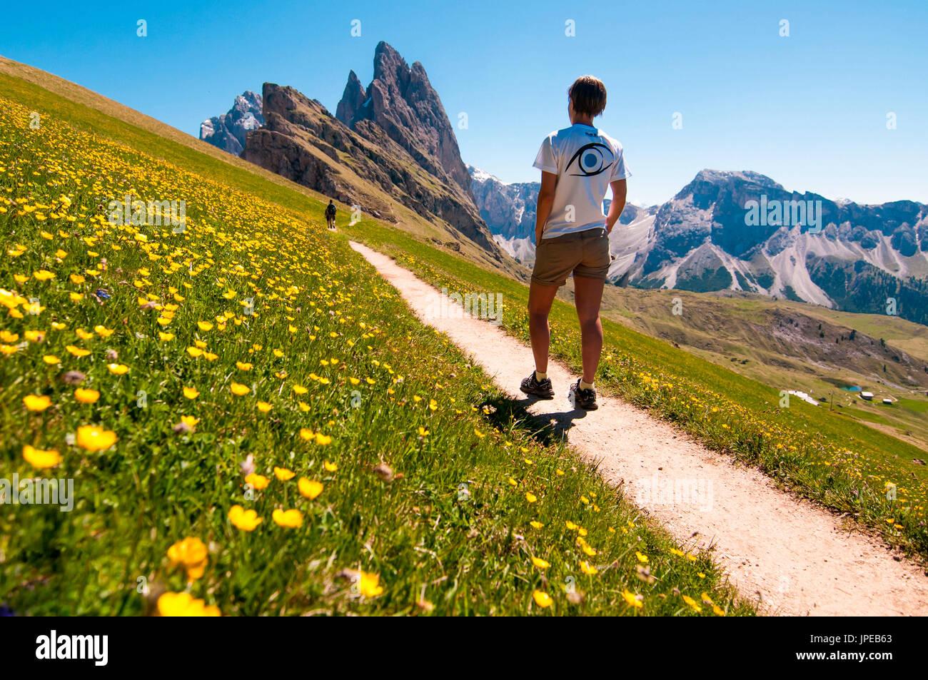 Trekker on the trail in the panorama of Seceda Mountains. Dolomiti, Trentino Alto Adige, Italy - Stock Image