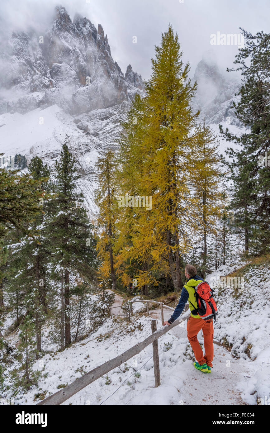 Funes Valley, Dolomites, South Tyrol, Italy. Hiker admires the Peaks of Odle the from the Alta Via Adolf Munkel - Stock Image