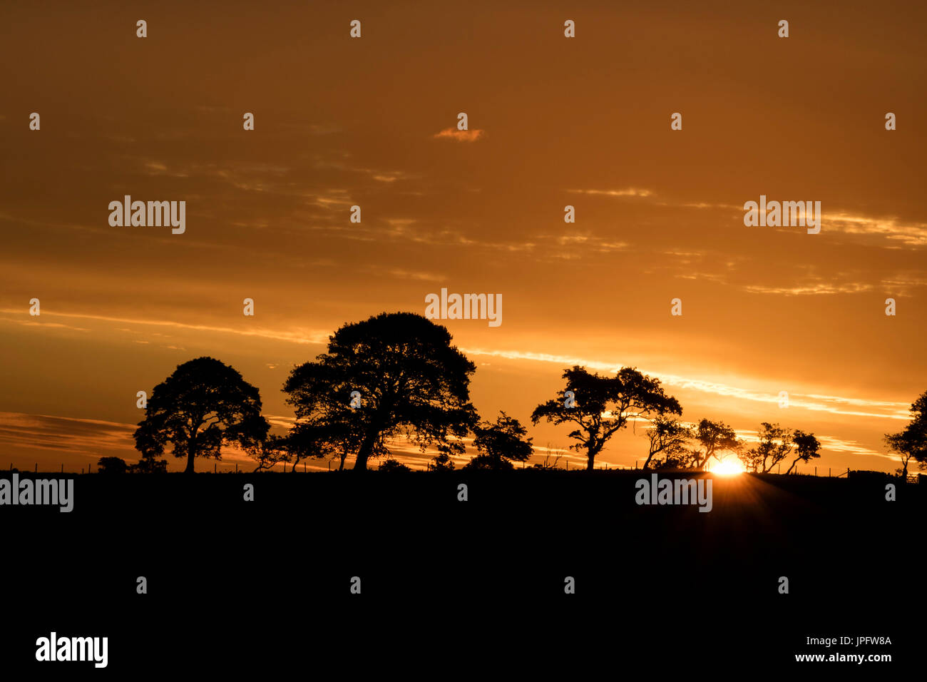 Marwood, Teesdale, County Durham UK.  Wednesday 2nd August 2017. UK Weather.  With rain expected to spread to most parts of the UK today the old country saying of 'red sky in the morning shepherds warning' may well come true today. Credit: David Forster/Alamy Live News. - Stock Image