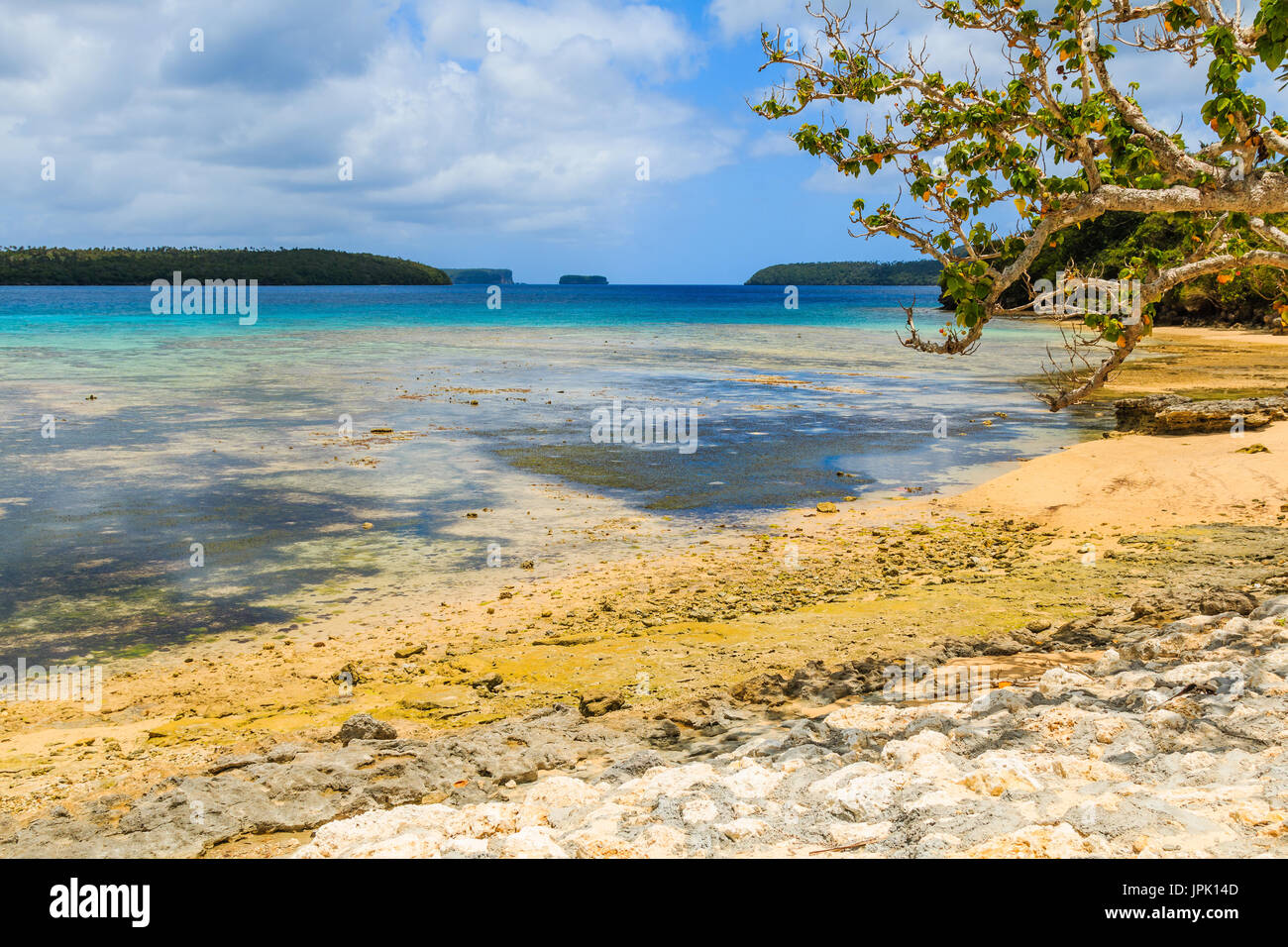 Vava'u archipelago, Neiafu, Tonga. View of tropical beach in the Vava`u island. - Stock Image