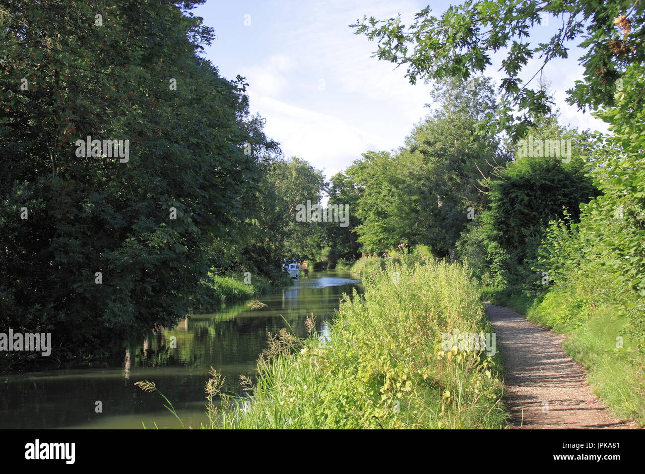 Basingstoke Canal, Fleet, Hart District, Hampshire, England, Great Britain, United Kingdom, UK, Europe - Stock Image
