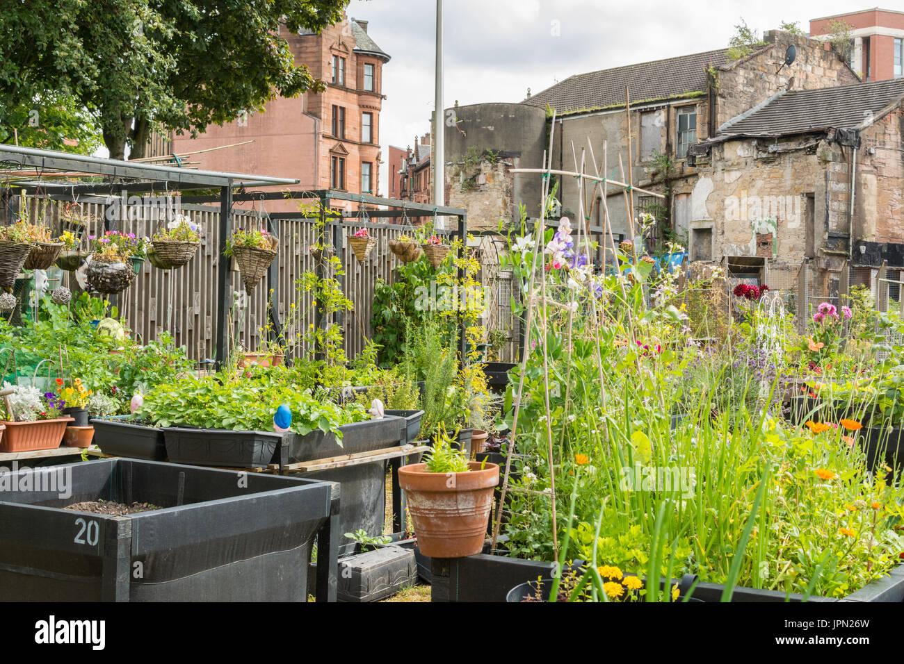 Greyfriars Garden a Stalled Spaces community garden, Merchant City area of Glasgow, Scotland,UK - Stock Image