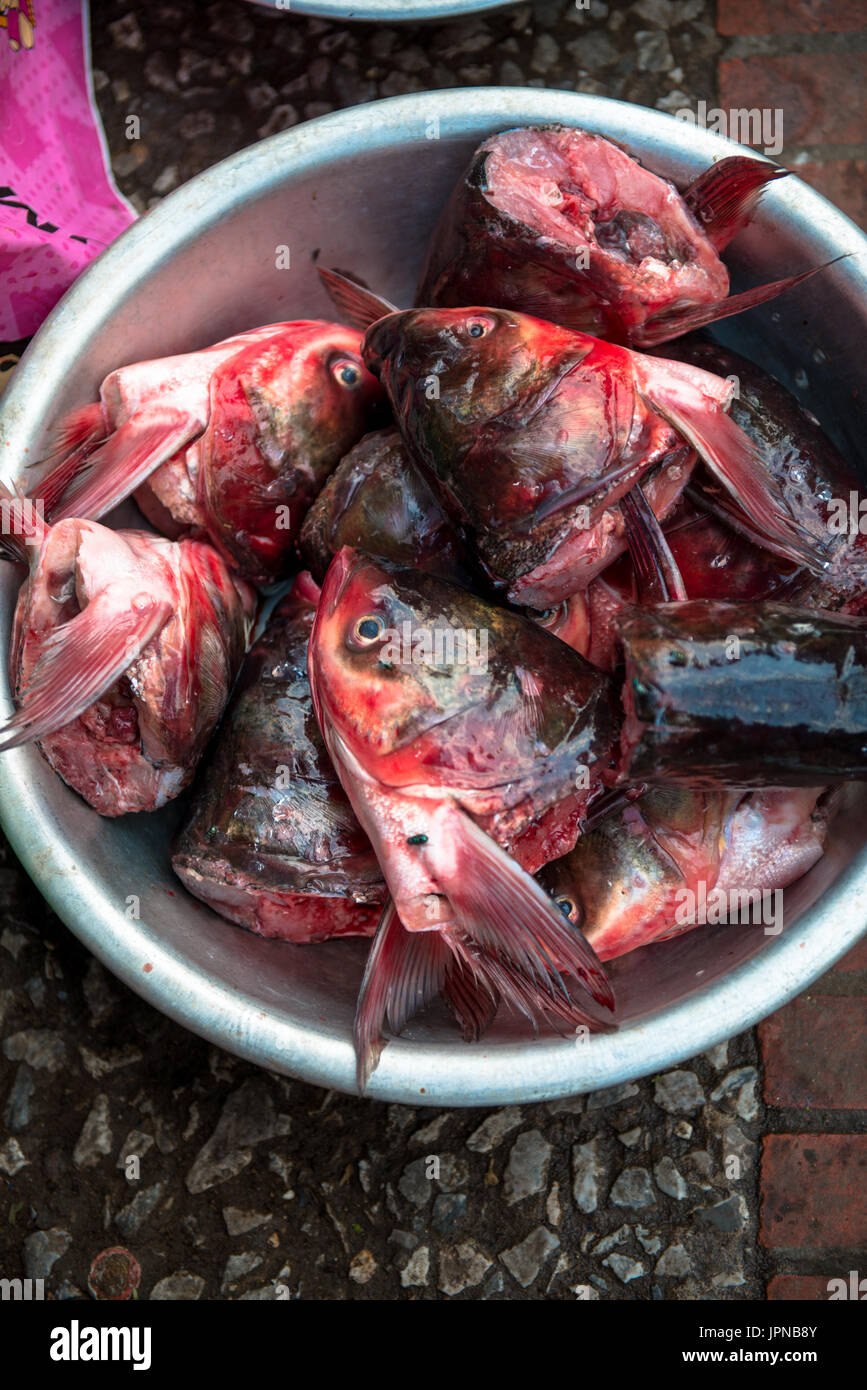 A basket full of fishes head in red color in Luang Prabang\'s Morning ...