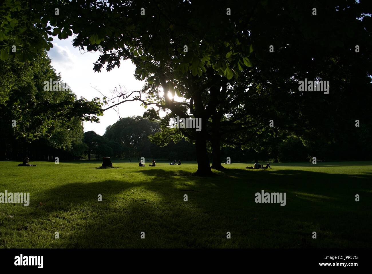 London Parks - Primrose Hill - UK - Stock Image