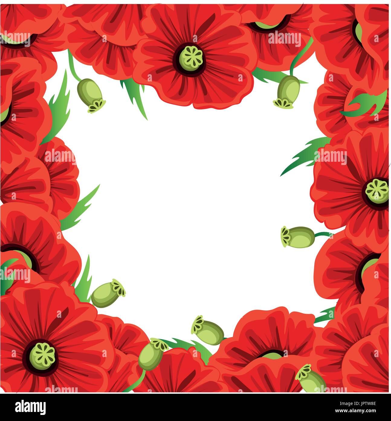 Poppy Flower Stock Vector Images Alamy
