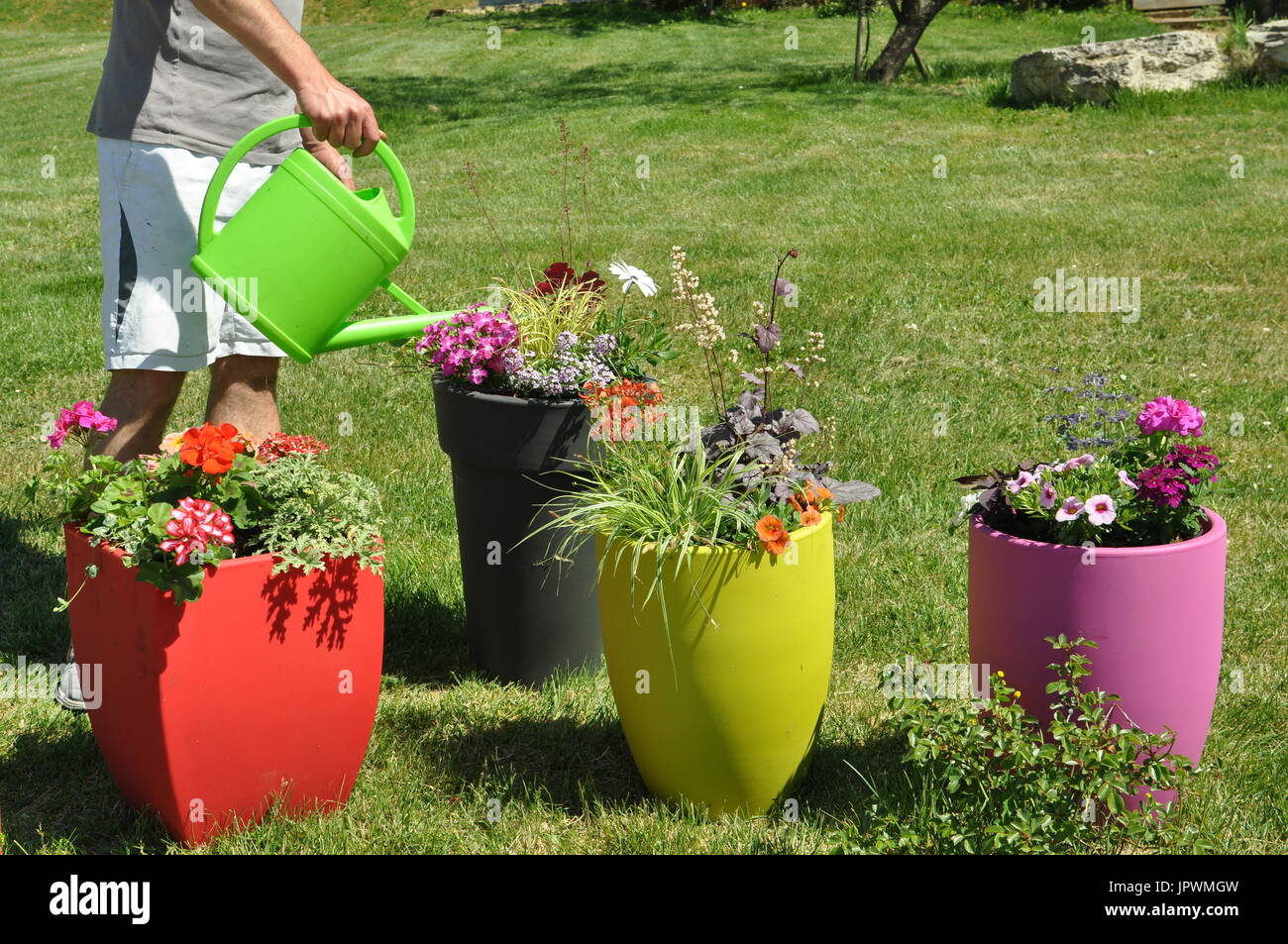 Plantation Of Decorative Containers In A Garden