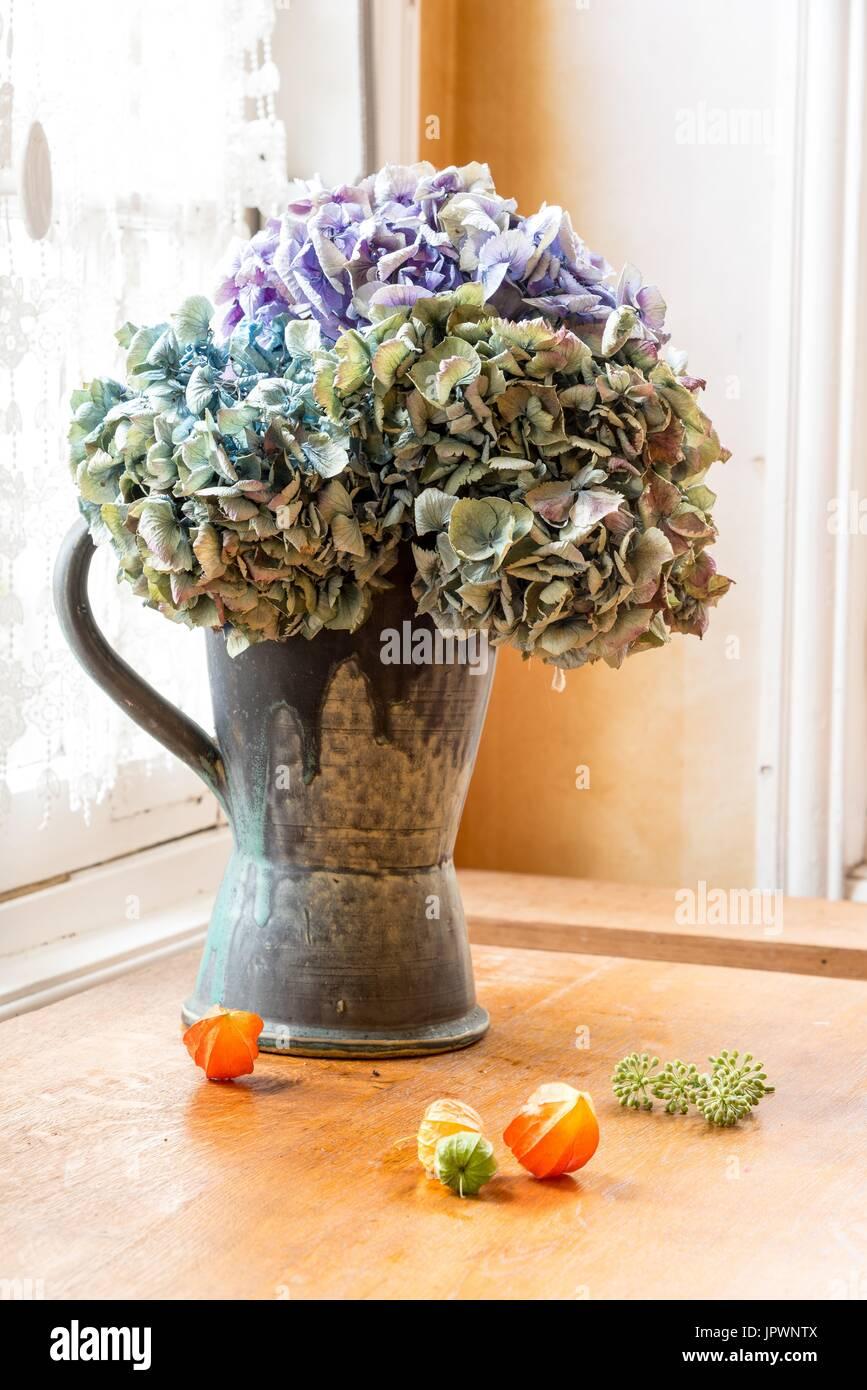 Dried Hydrangeas Bouquet And Physalis Stock Photo 151771338 Alamy