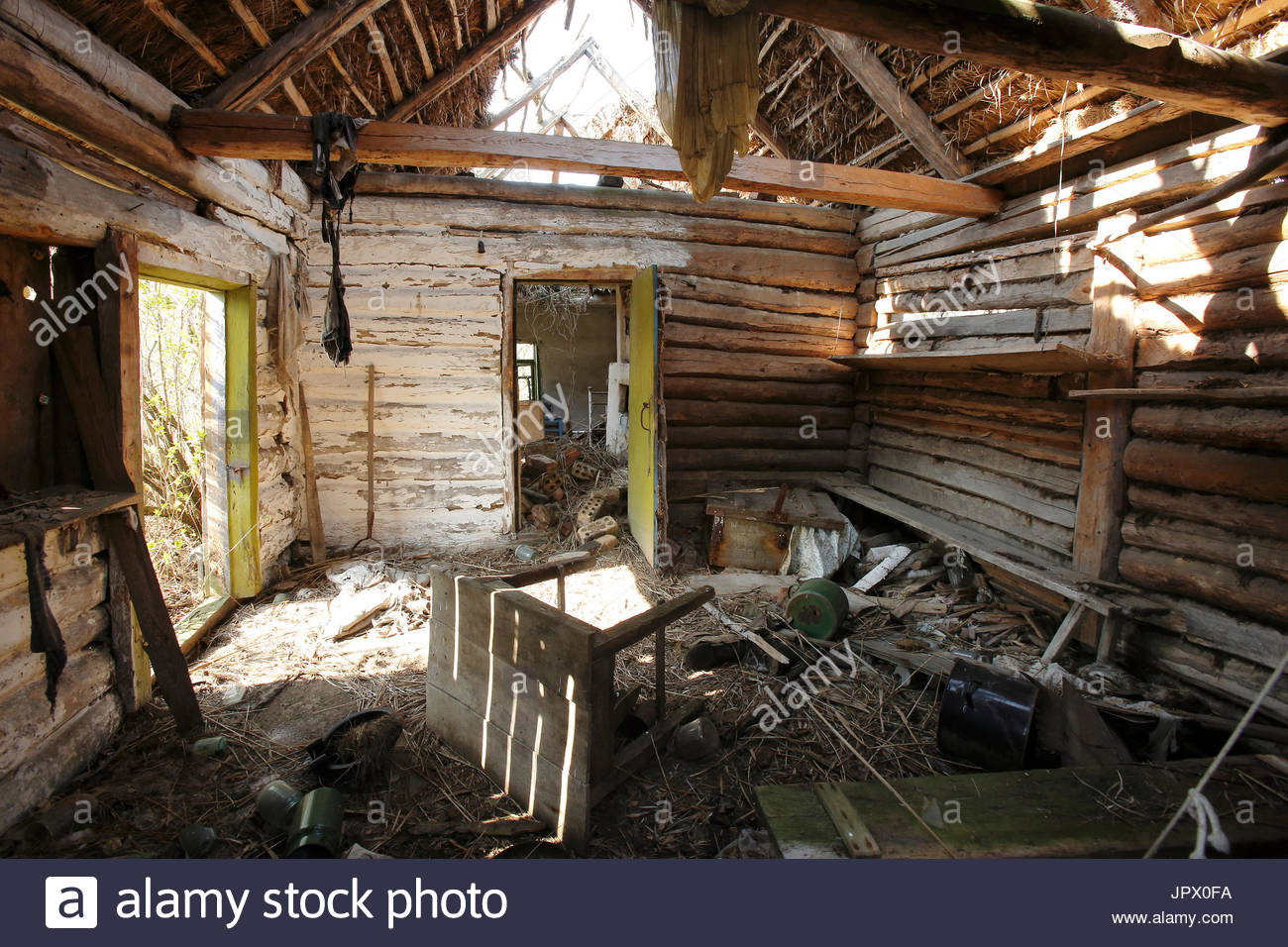 Abandoned wooden house collapsed roof - Ukraine - Stock Image