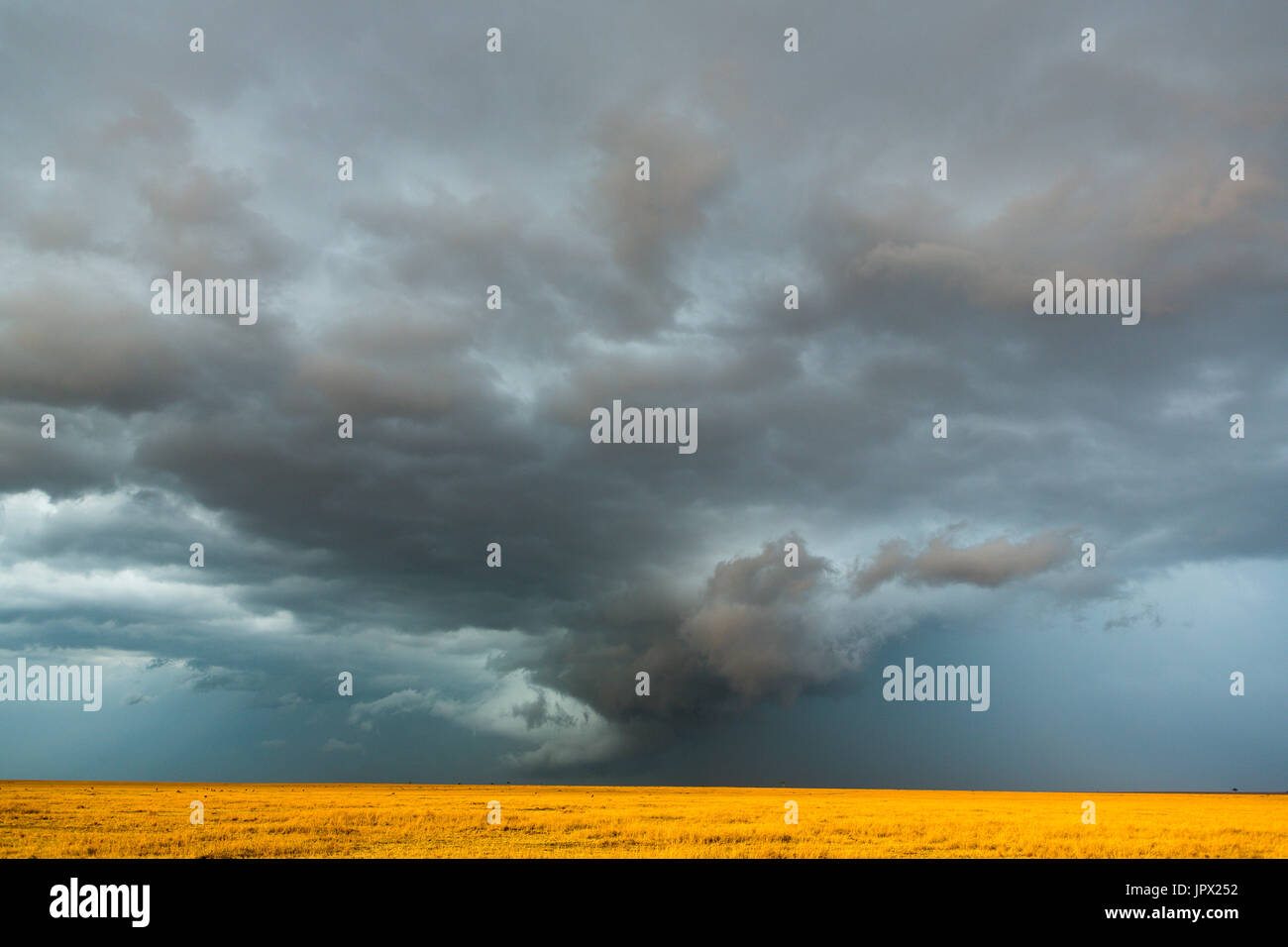 Clouds and storm in dry season - Masai Mara Kenya - Stock Image