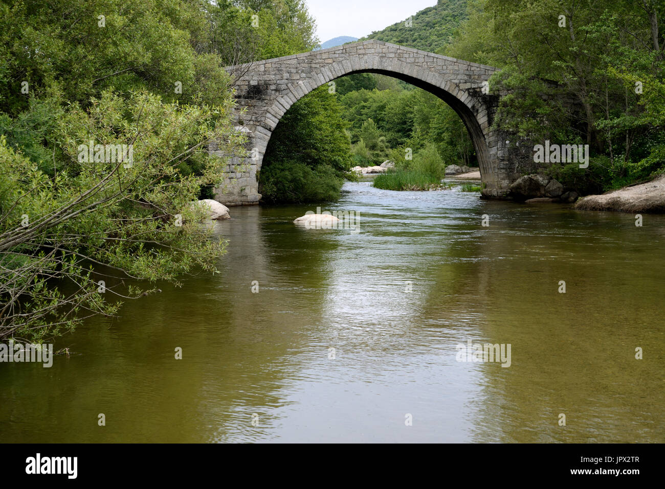 Genoese bridge of the thirteenth century on the Rizzanese - Corse France - Stock Image