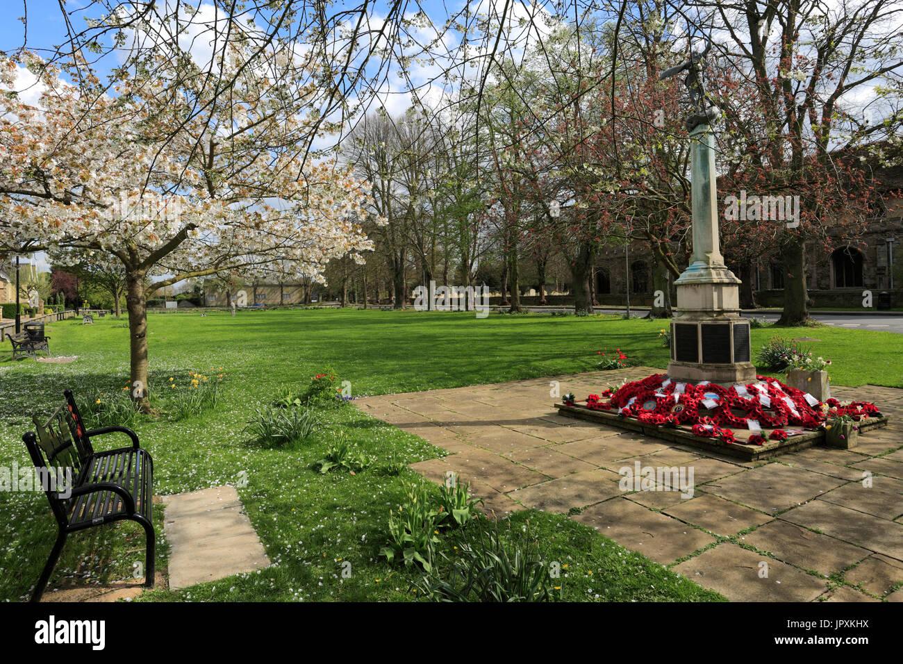 Spring blossom, War memorial, Ramsey village; Cambridgeshire; England; UK - Stock Image