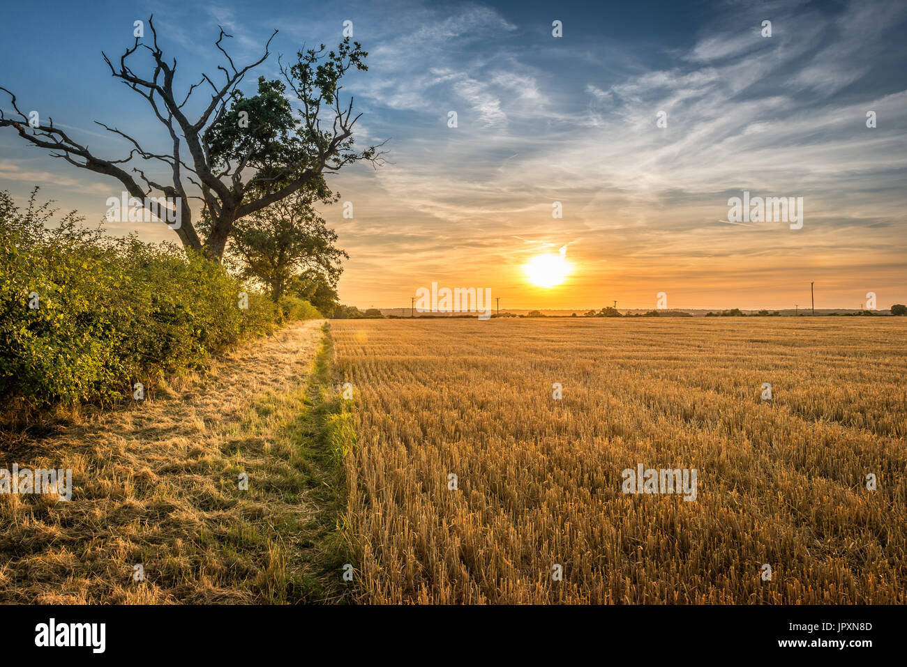 Early evening and the sun begins to set over farmed agricultural land in the Lincolnshire Fens Stock Photo