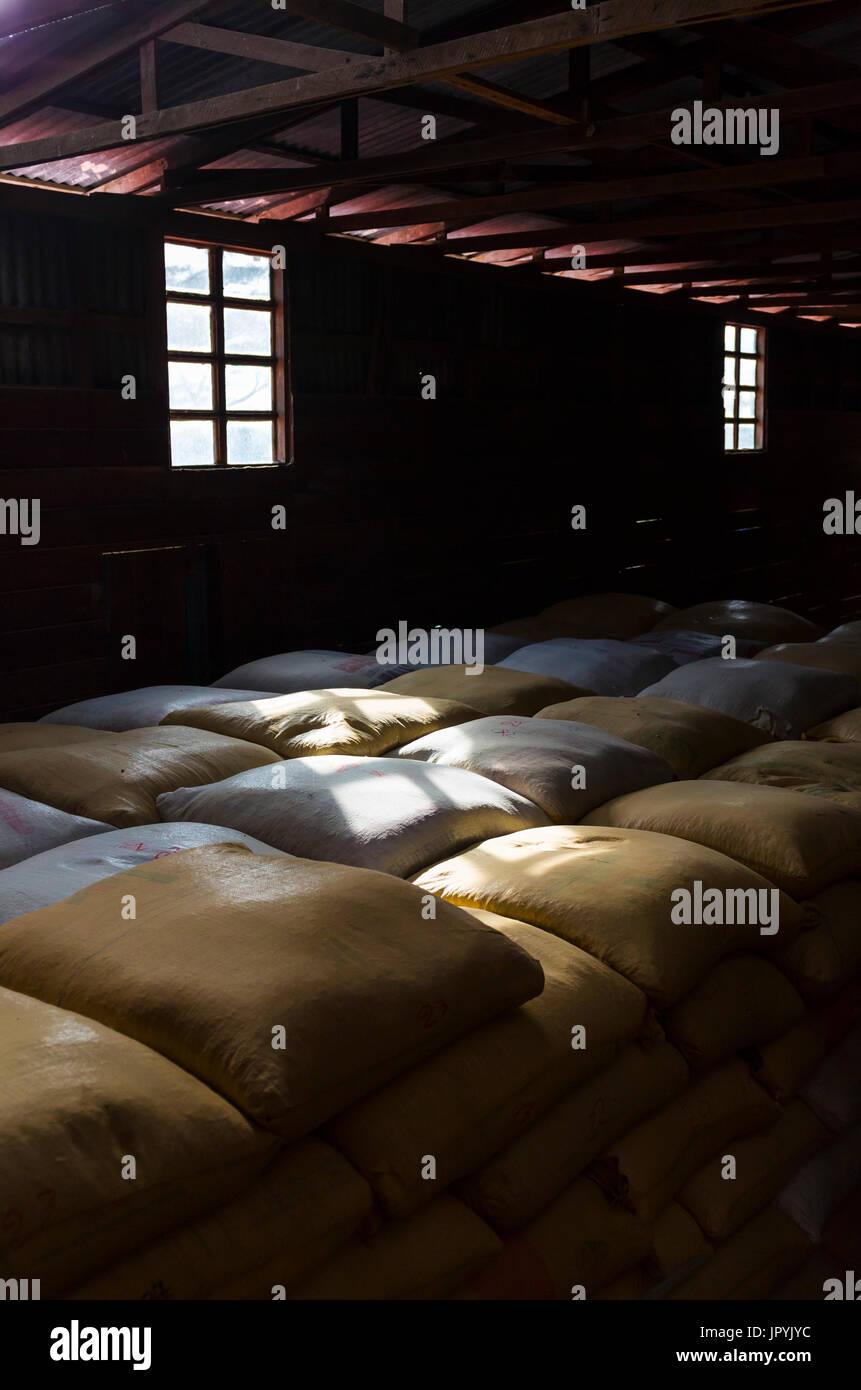 Coffee bean bags - Alajuela Costa Rica - Stock Image