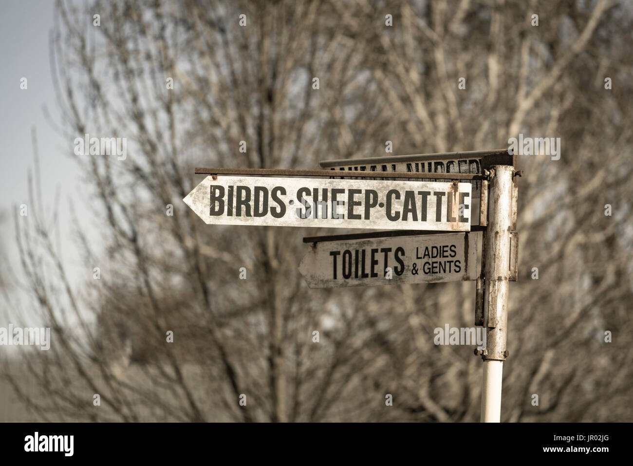 An unusual street sign at the Bathurst Showground in western NSW, Australia - Stock Image
