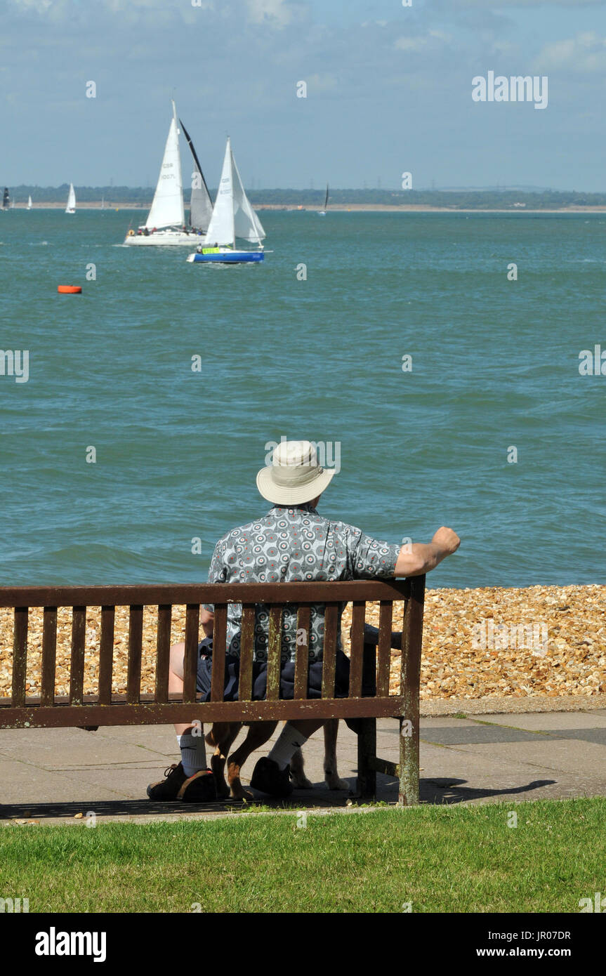 an older man or elderly man with his dog sitting on a bench on the beach or seashore watching the sailing next to a bed of brightly coloured flowers. - Stock Image