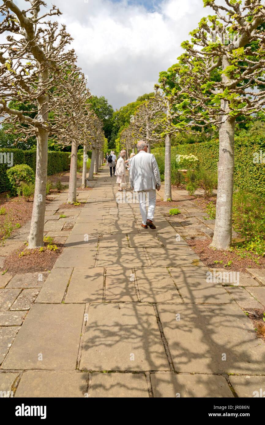 Visiting tourists strolling along the Lime Walk in Sissinghurst Castle Garden, Kent, England, United Kingdom. - Stock Image