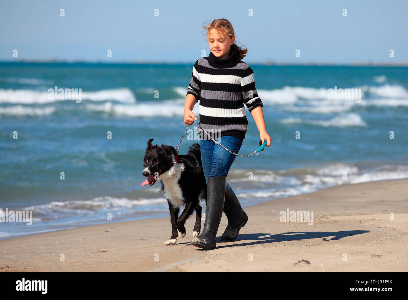 Girl playing with a Border Collie on a beach - Stock Image