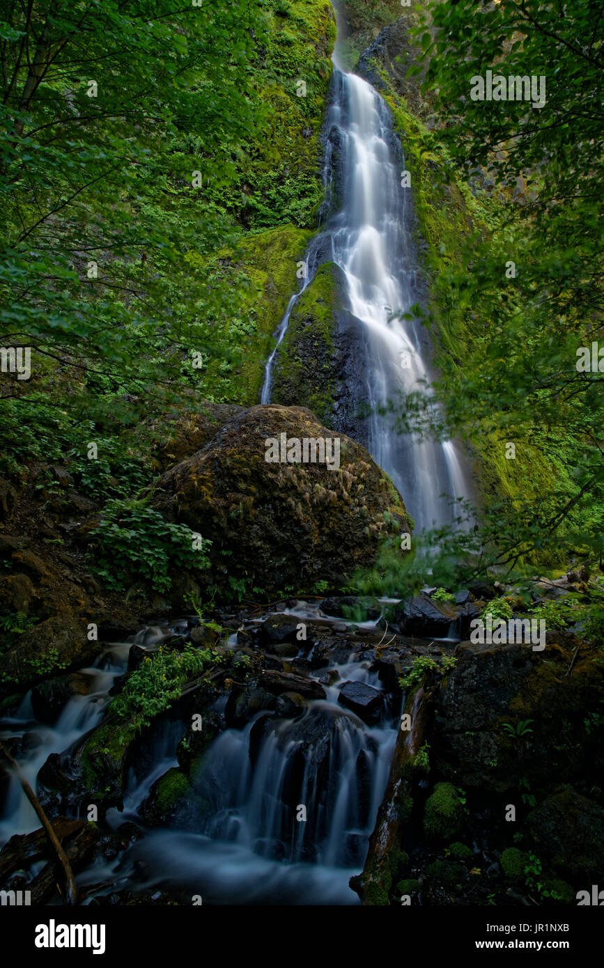 Lower Starvation Creek Falls - Stock Image