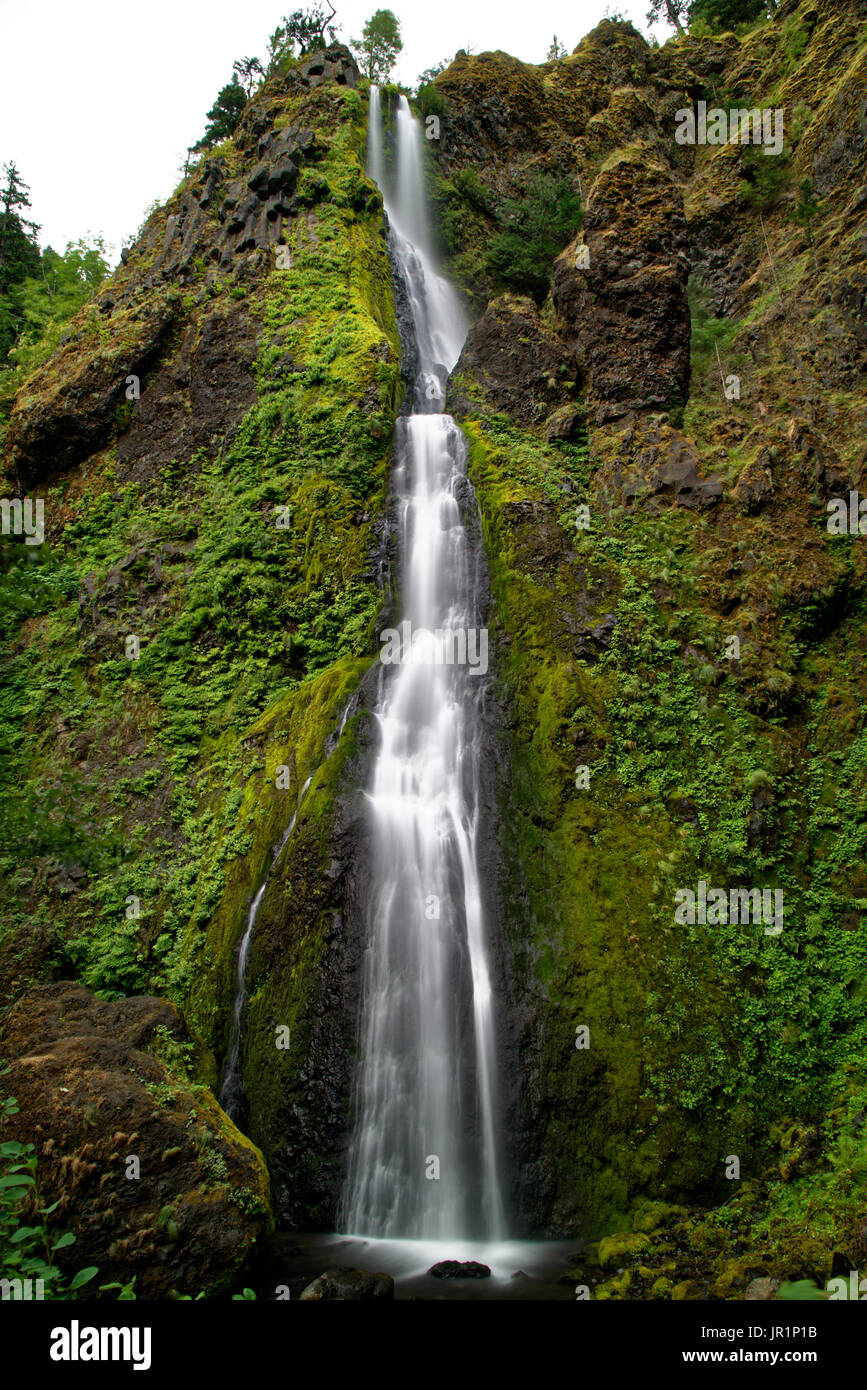 Starvation Creek Falls - Stock Image