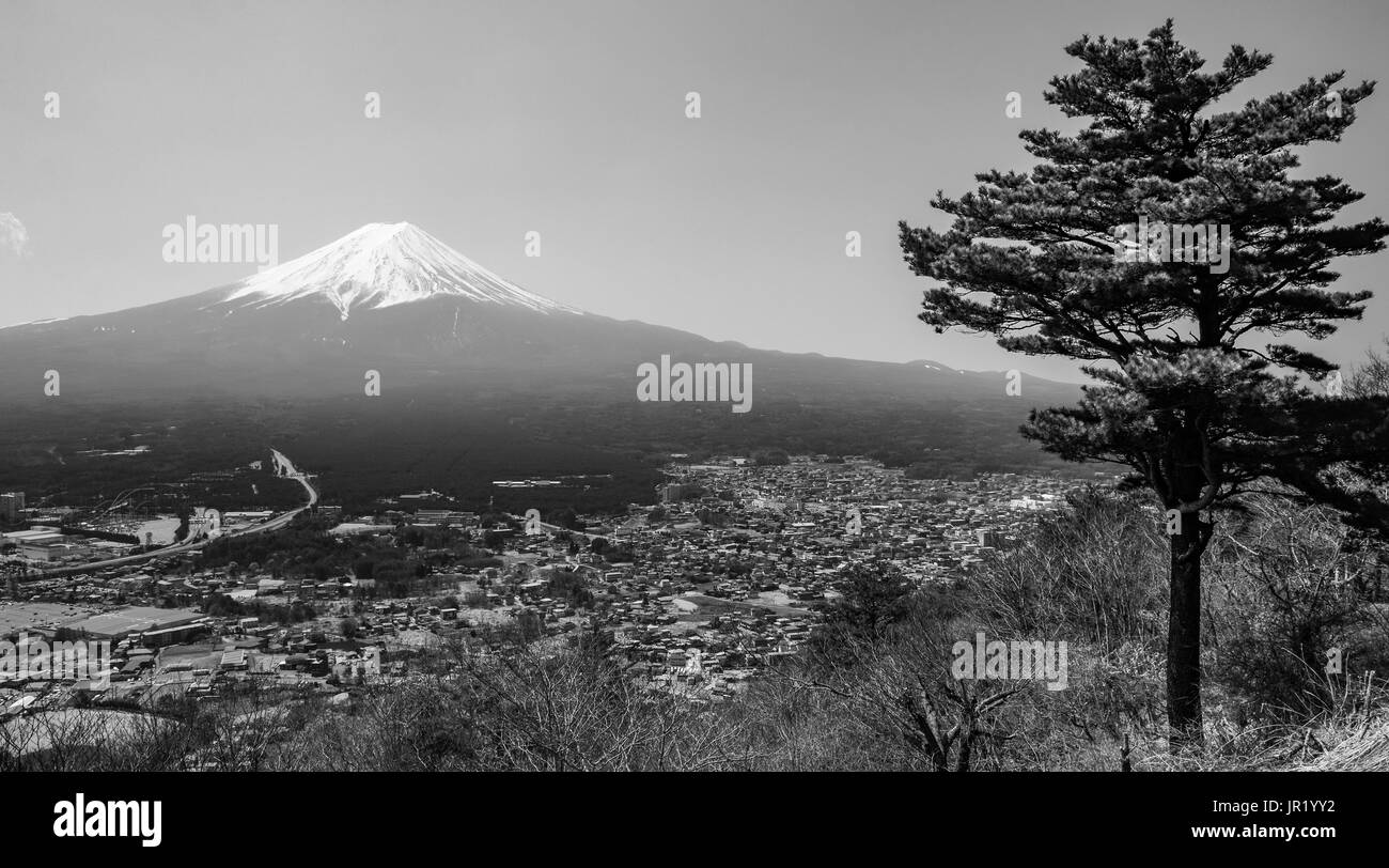 High contrast black and white landscape of Mount Fuji and a lone pine tree in Japan - Stock Image