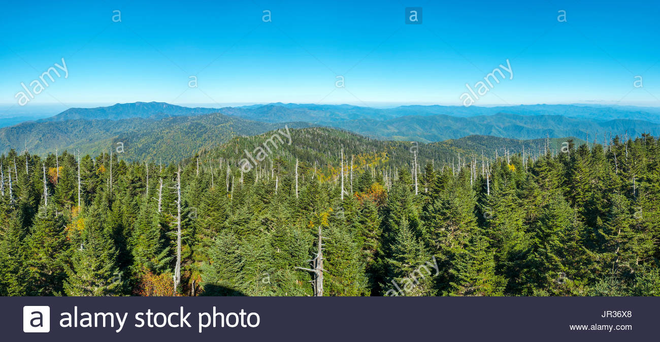 United States, North Carolina, Great Smoky Mountains National Park, Clingmans Dome, border of North Carolina and Tennessee. - Stock Image