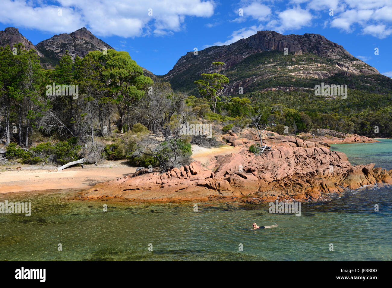 Swimmers at Honeymoon Bay in Freycinet National Park on East Coast of Tasmania, Australia - Stock Image