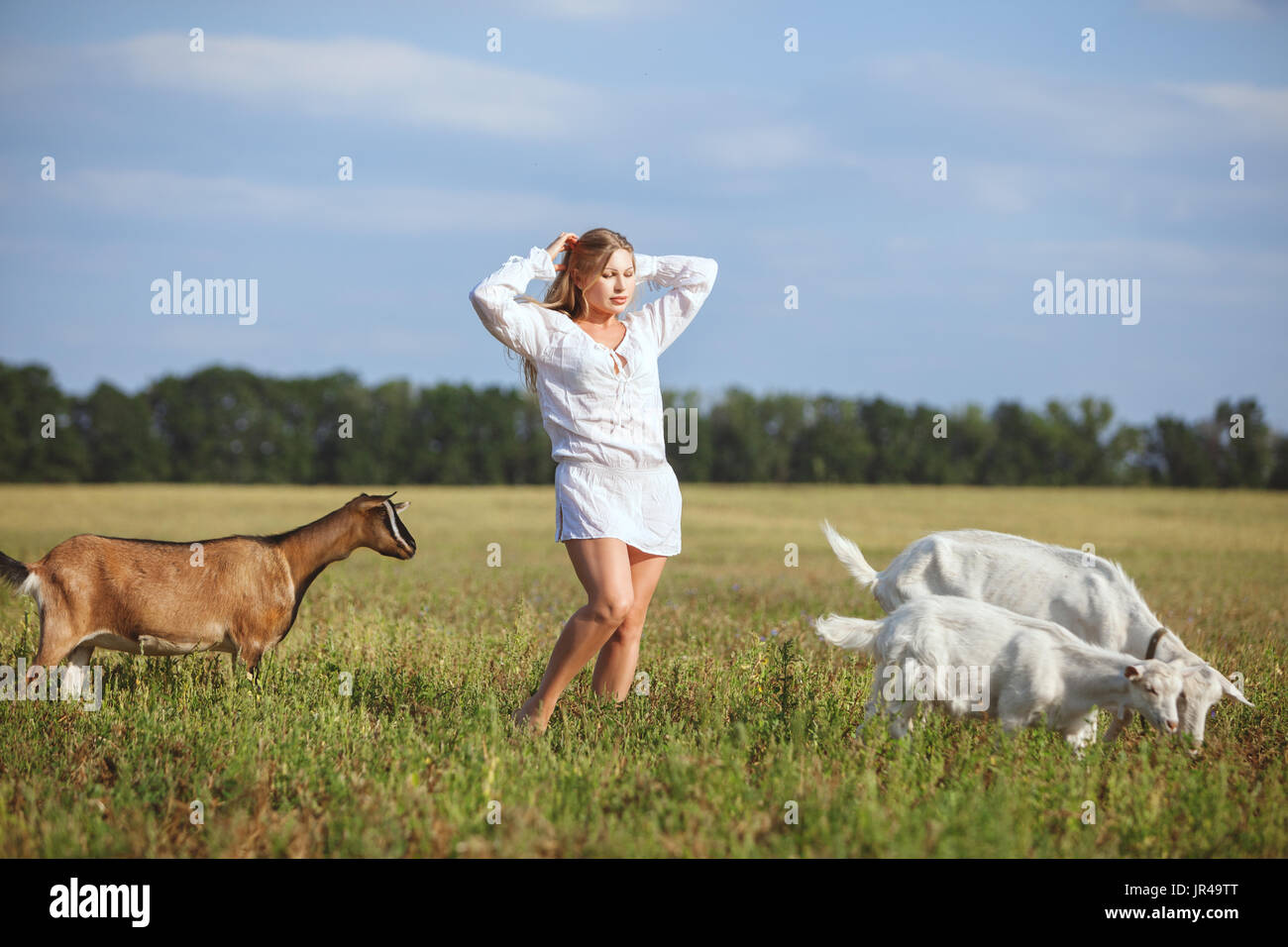 Woman is standing in a field, next to graze domestic goats. - Stock Image