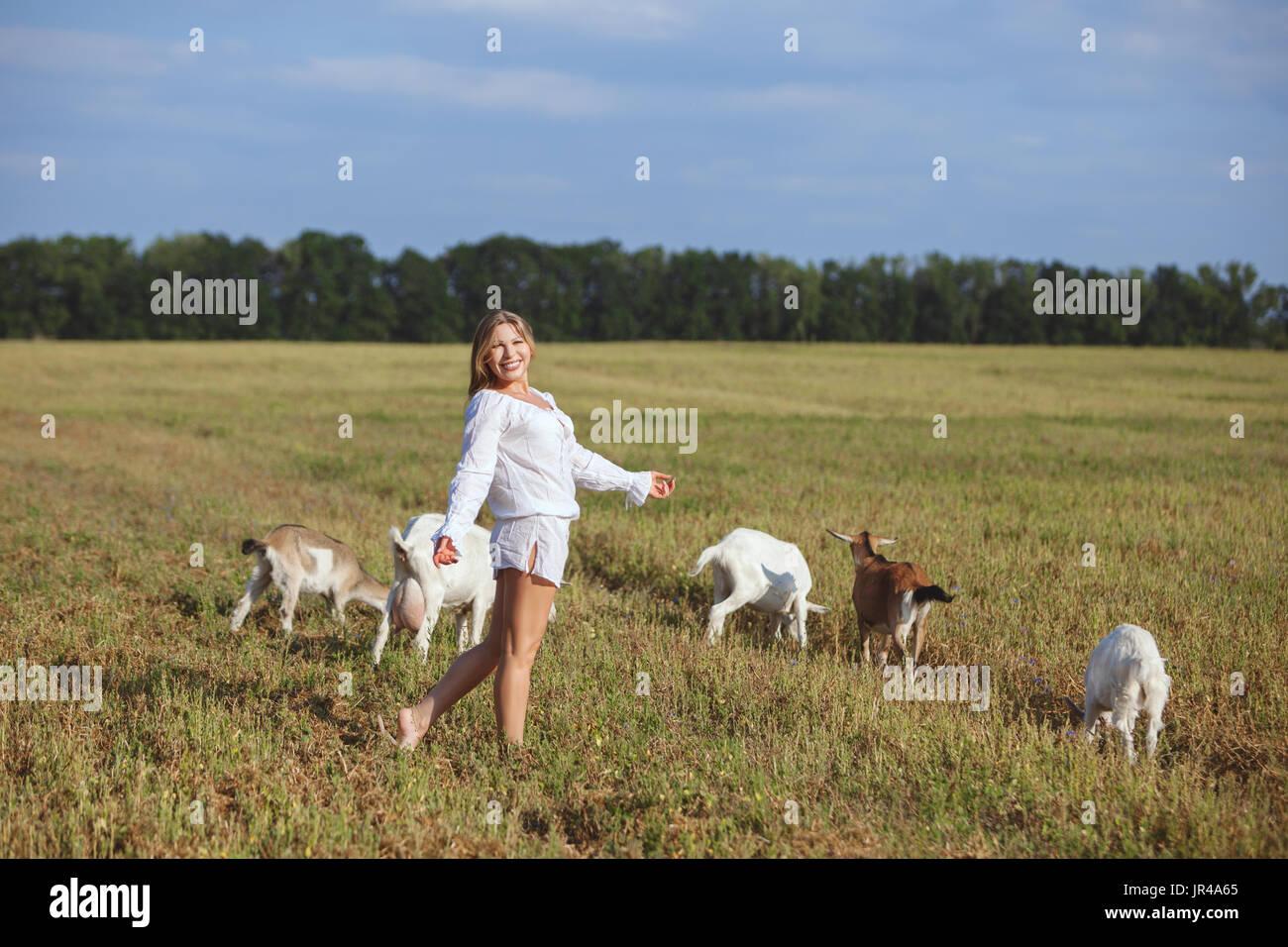 Goats graze in a meadow, woman walking beside him. - Stock Image