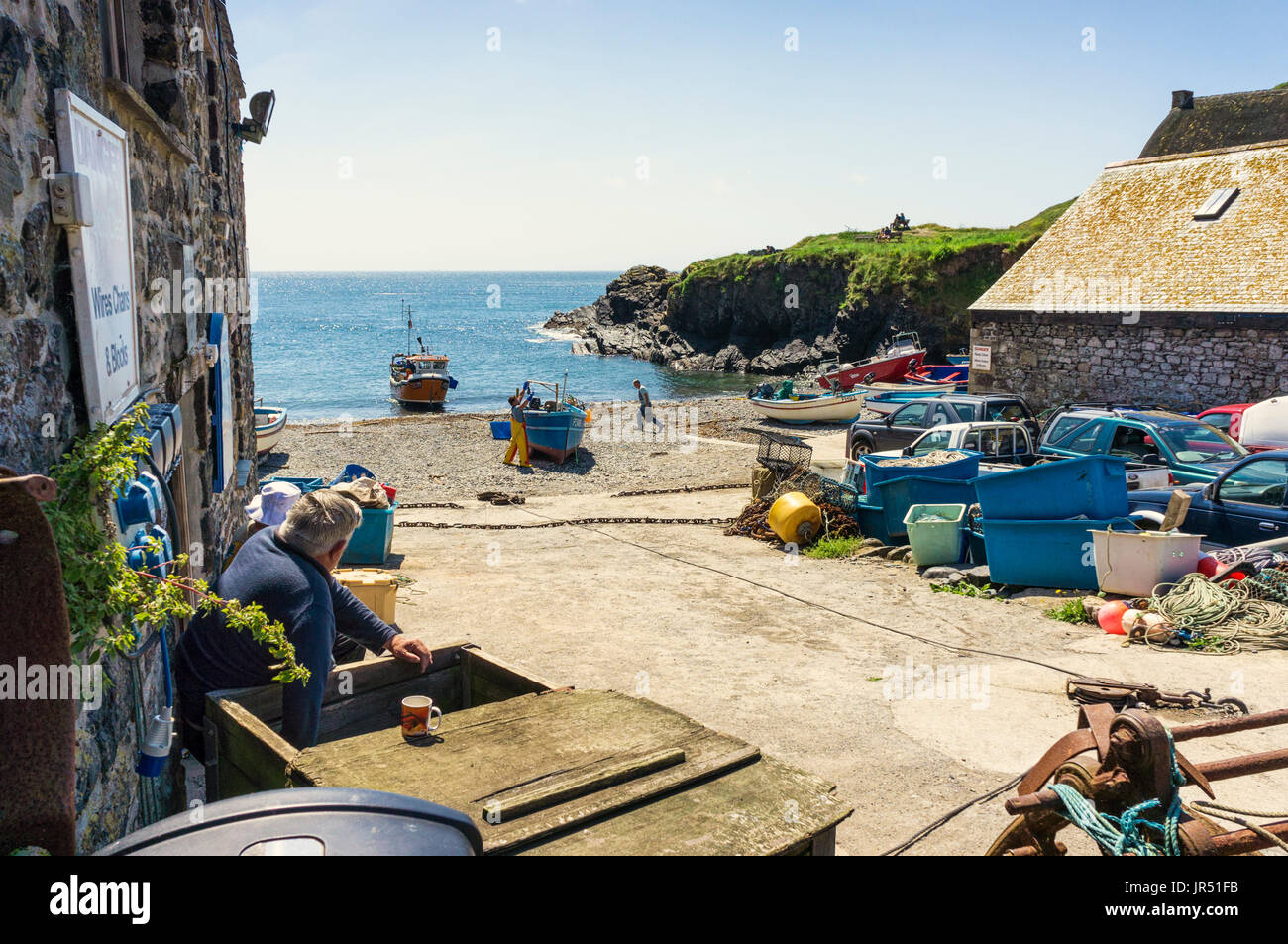 Fishing boats and fishermen at Cadgwith Cove, Lizard Peninsula, Cornwall, UK in summer landing a catch - Stock Image