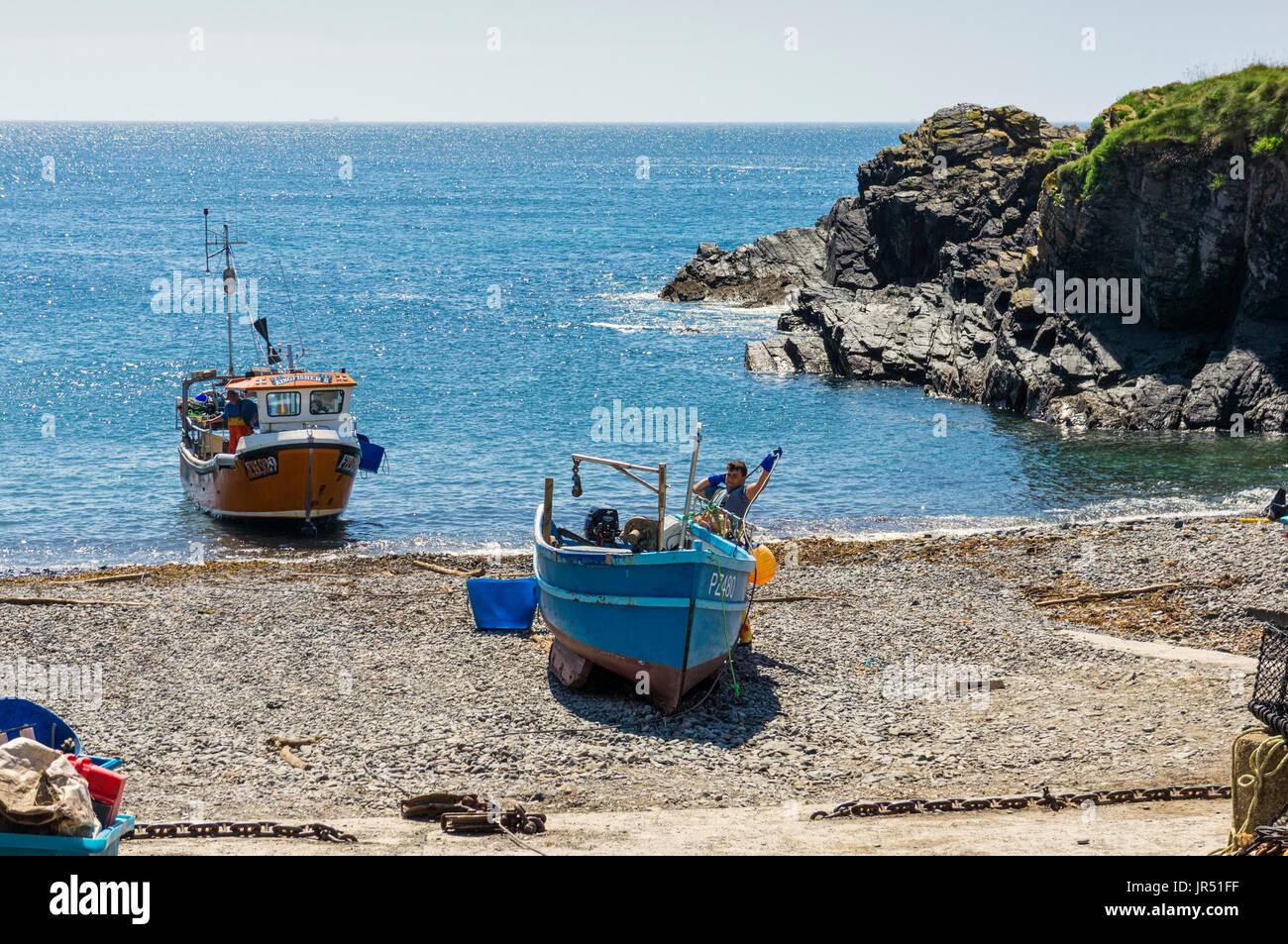 Fisherman and fishing boats at Cadgwith Cove, Lizard Peninsula, Cornwall, UK - Stock Image
