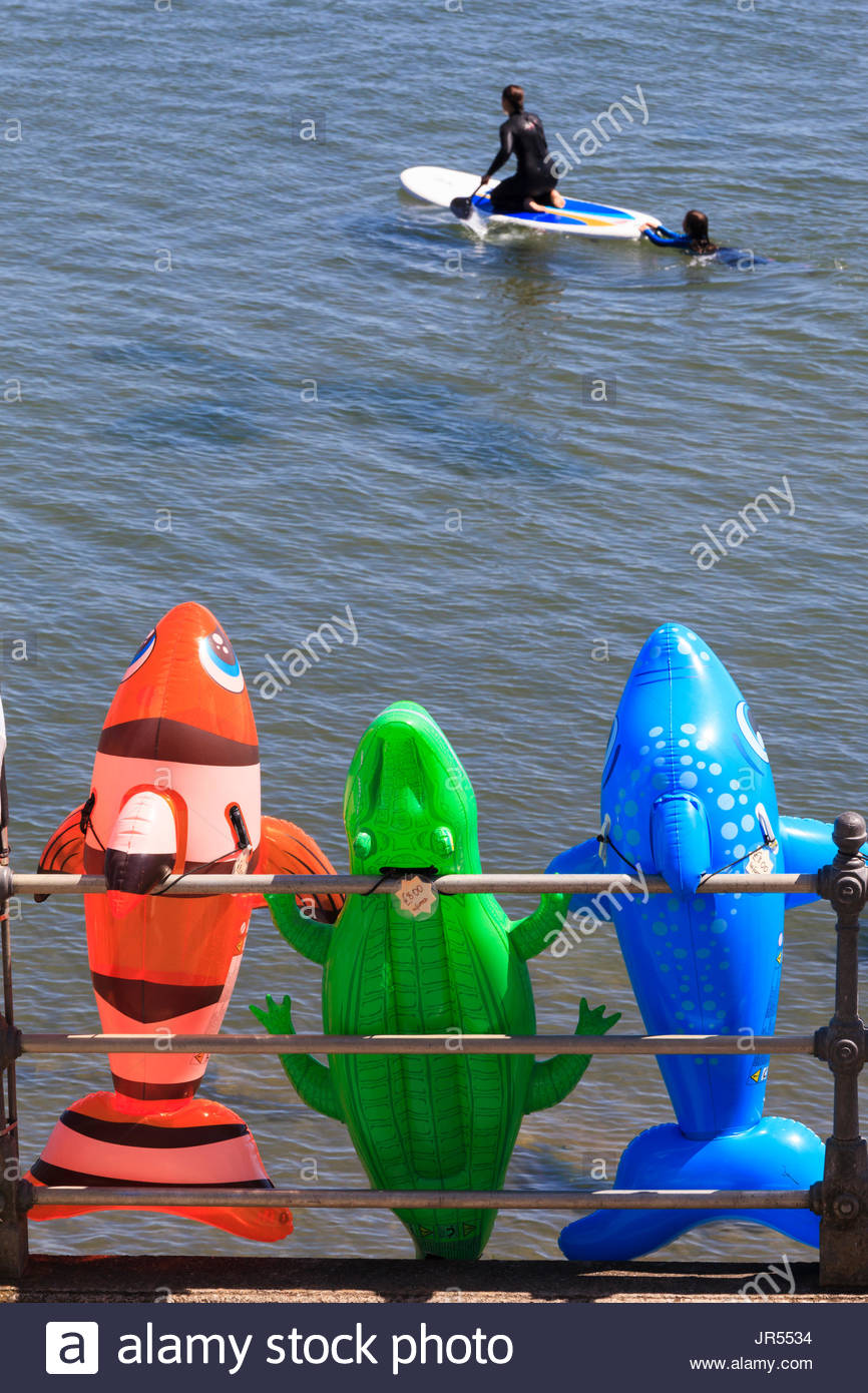 Inflatable animal floats for sale and people stand up paddle boarding Scarborough North Yorkshire England UK Stock Photo