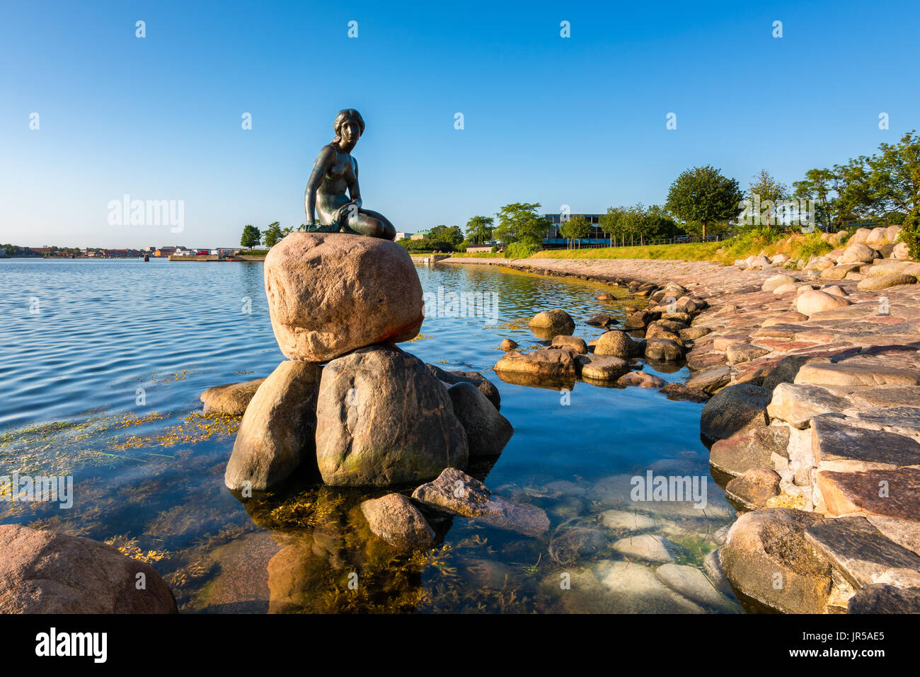 The famous Little Mermaid statue in the harbor of  Copenhagen Denmark - Stock Image