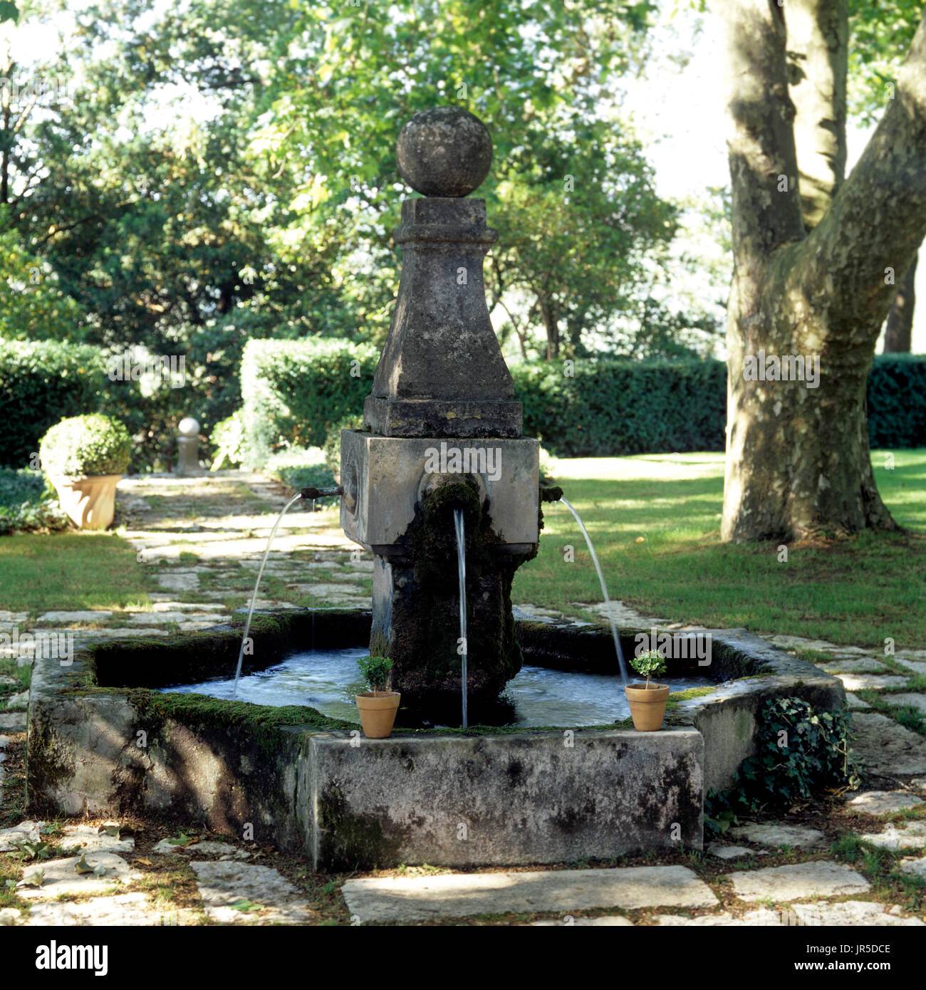 Water fountain in a back garden - Stock Image