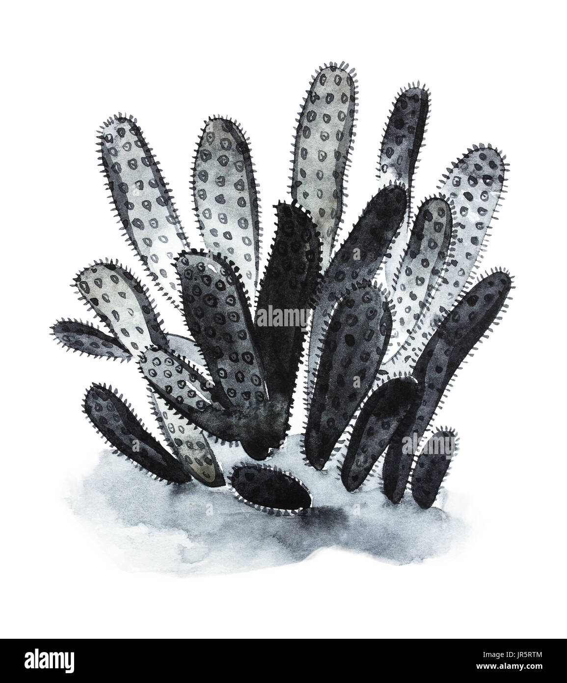 Black corals sea life object isolated on white background. Watercolor hand drawn painted illustration. Underwater watercolor background illustration. - Stock Image