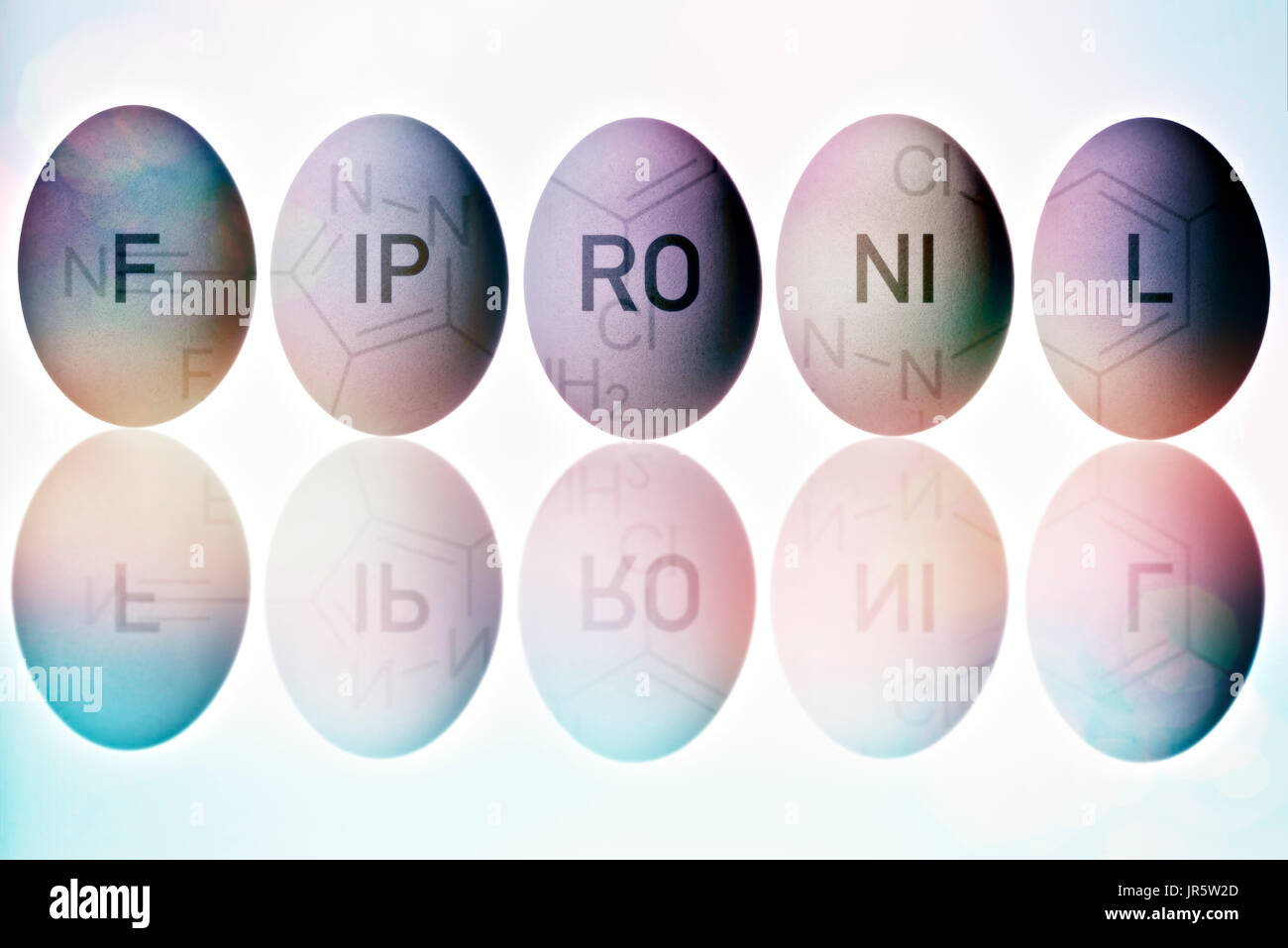 Eggs contaminated with fipronil - Stock Image