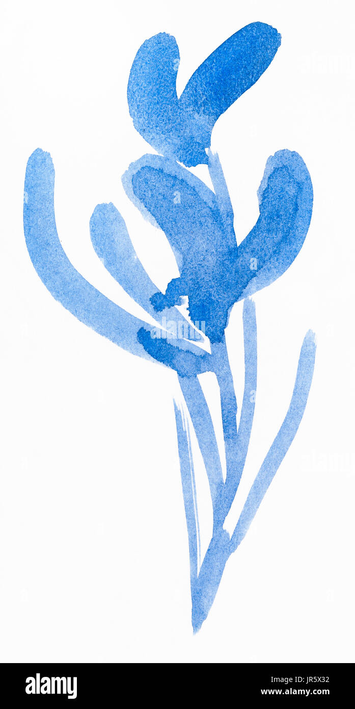 training drawing in suibokuga style with watercolor paints - blue sketch of orchid flower on white paper Stock Photo