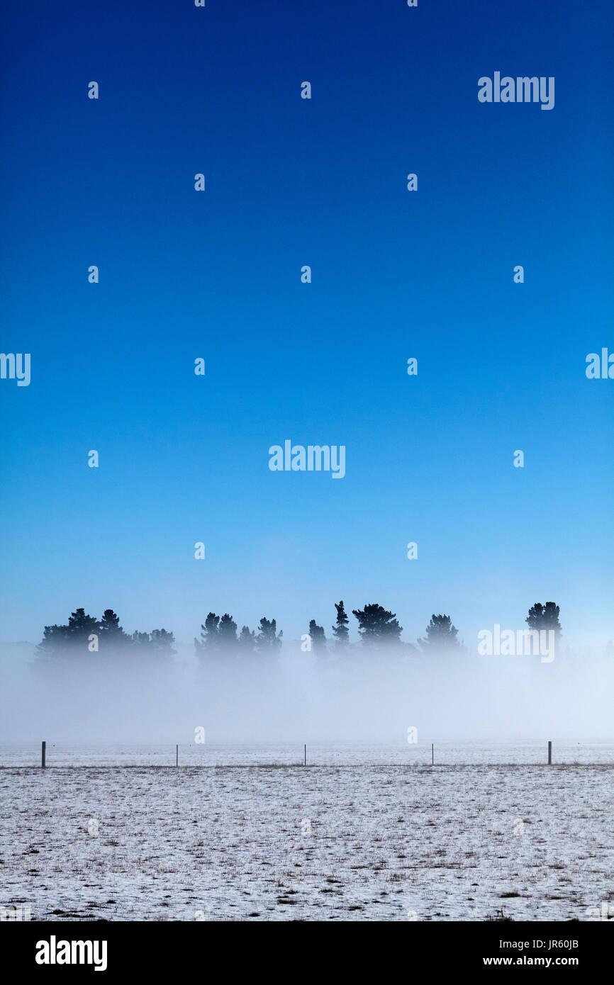 Farmland and freezing fog, Maniototo, Central Otago, South Island, New Zealand - Stock Image