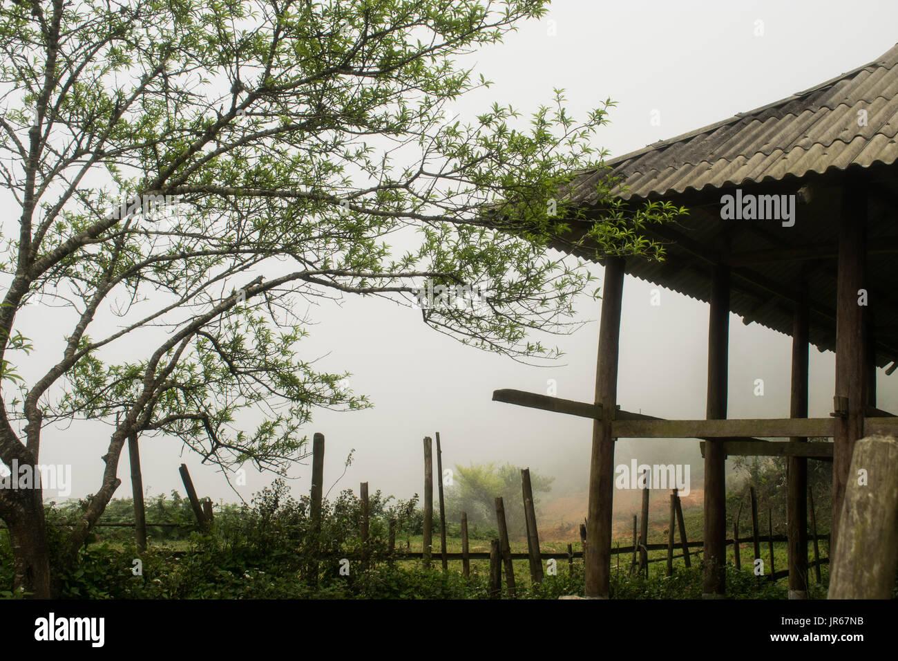 Sapa mist - Stock Image
