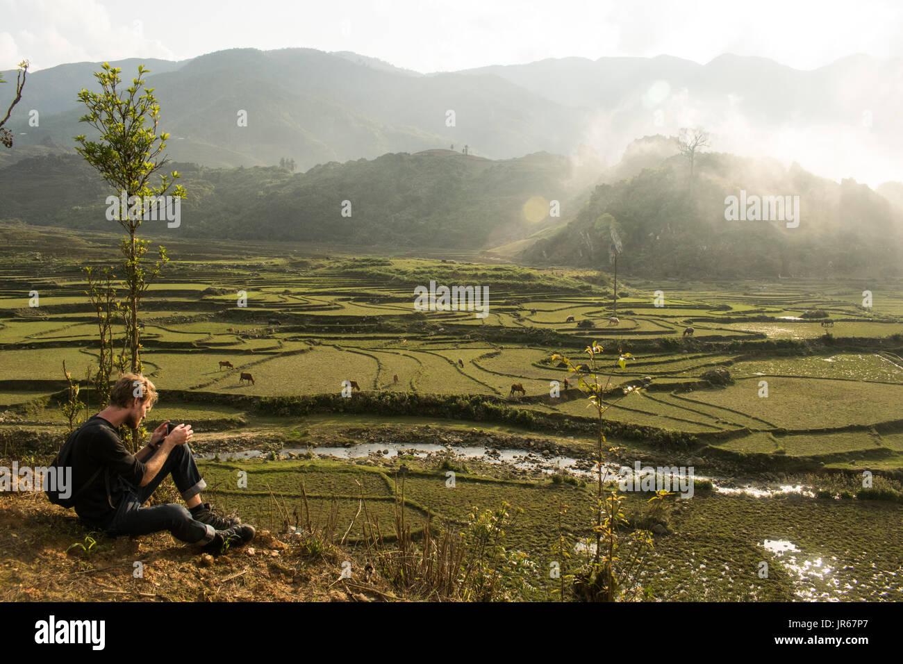 Sapa rice fields - Stock Image