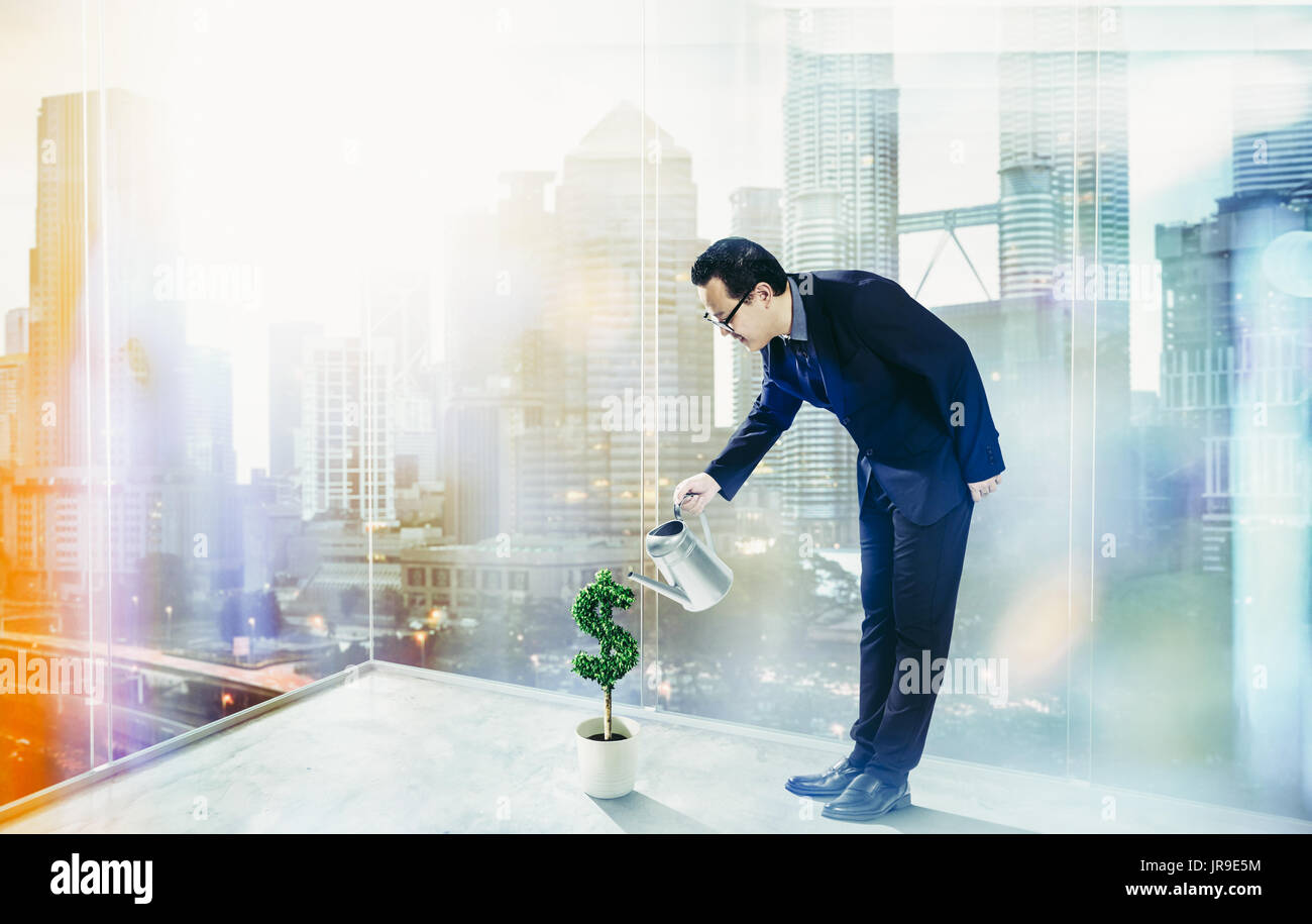 Business Man pouring water on dollar shaped tree . Business growth and entrepreneurship concept. - Stock Image