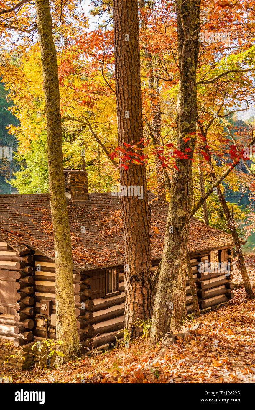Lakefront log cabin (built by the Civilian Conservation Corps in the 1930s) under a colorful spectrum of Autumn leaves at Georgia's Vogel State Park. - Stock Image