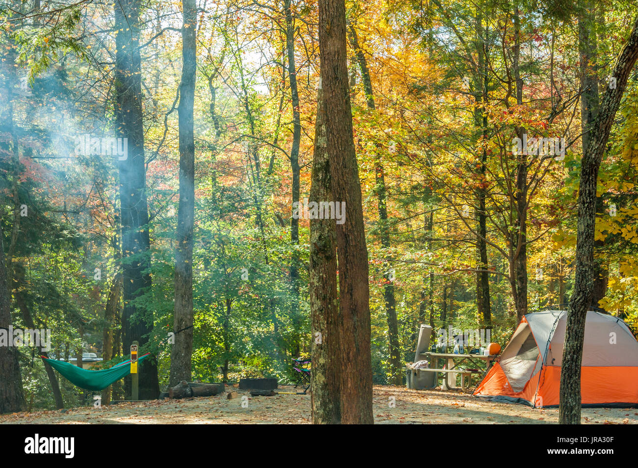 Tent camper resting in a hammock as campfire smoke catches sunlight amidst the trees on a beautiful Autumn morning in the Blue Ridge Mountains. (USA) - Stock Image