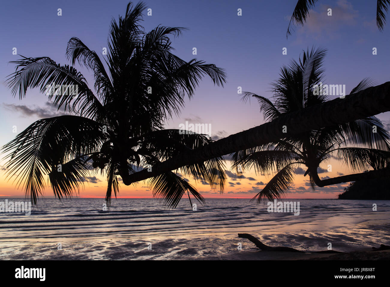 Palm trees during sunset on a beautiful tropical beach on Koh Kood island in Thailand Stock Photo