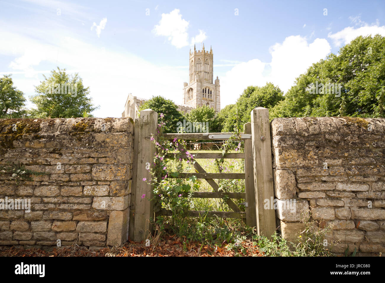 Church of St.Mary and all Saints centre of Fotheringhay - Stock Image