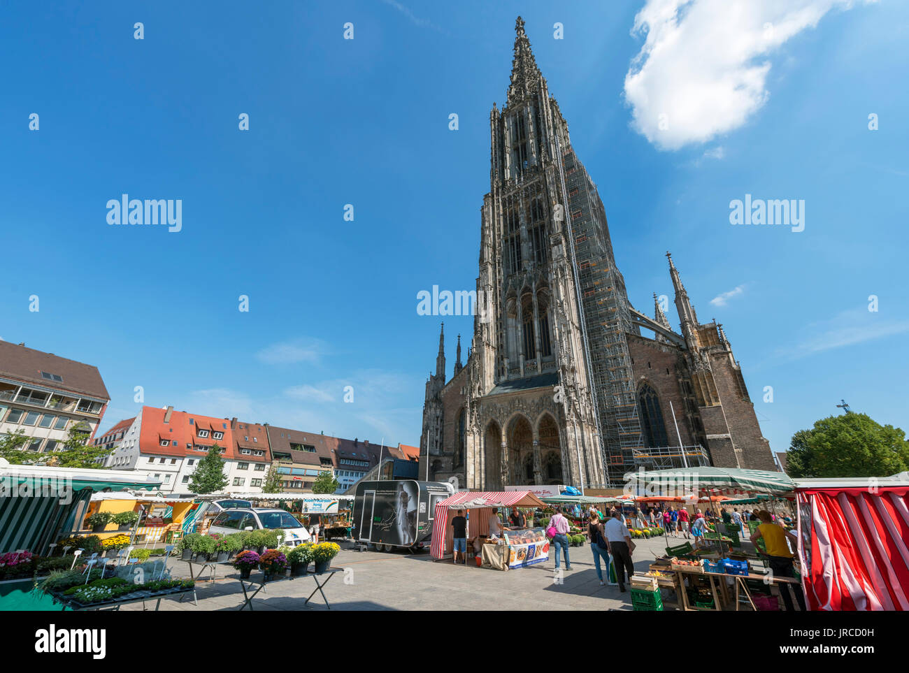 Market in front of the Münster, Münsterplatz, Ulm, Baden-Württemberg, Germany Stock Photo